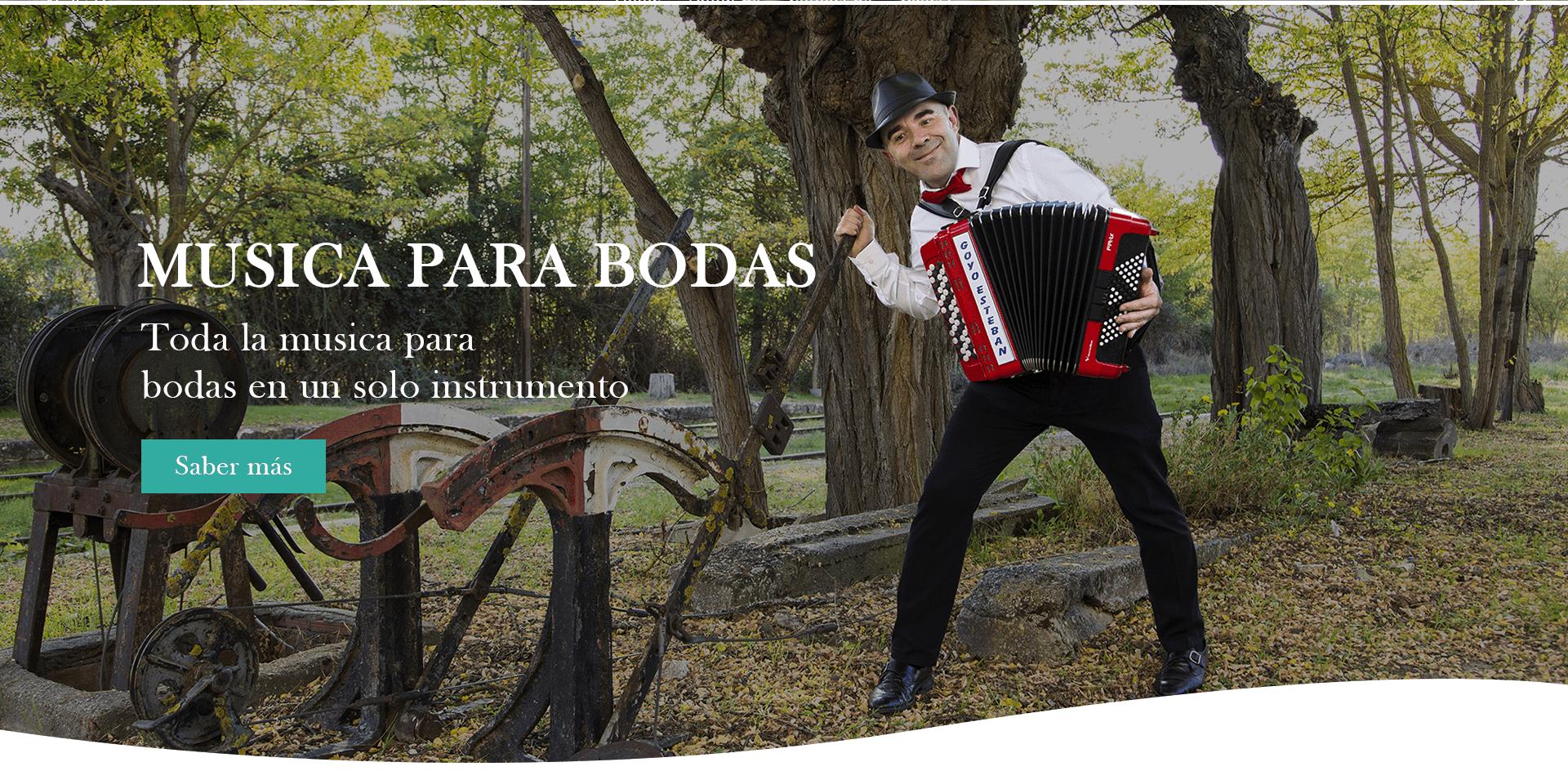 musica para bodas musico para bodas y eventos en españa soria madrid burgos valladolid